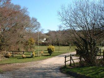 Hedley Wood Caravan and Camping Park